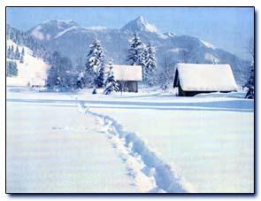 Ferienwohnung Bernrieder, Winter